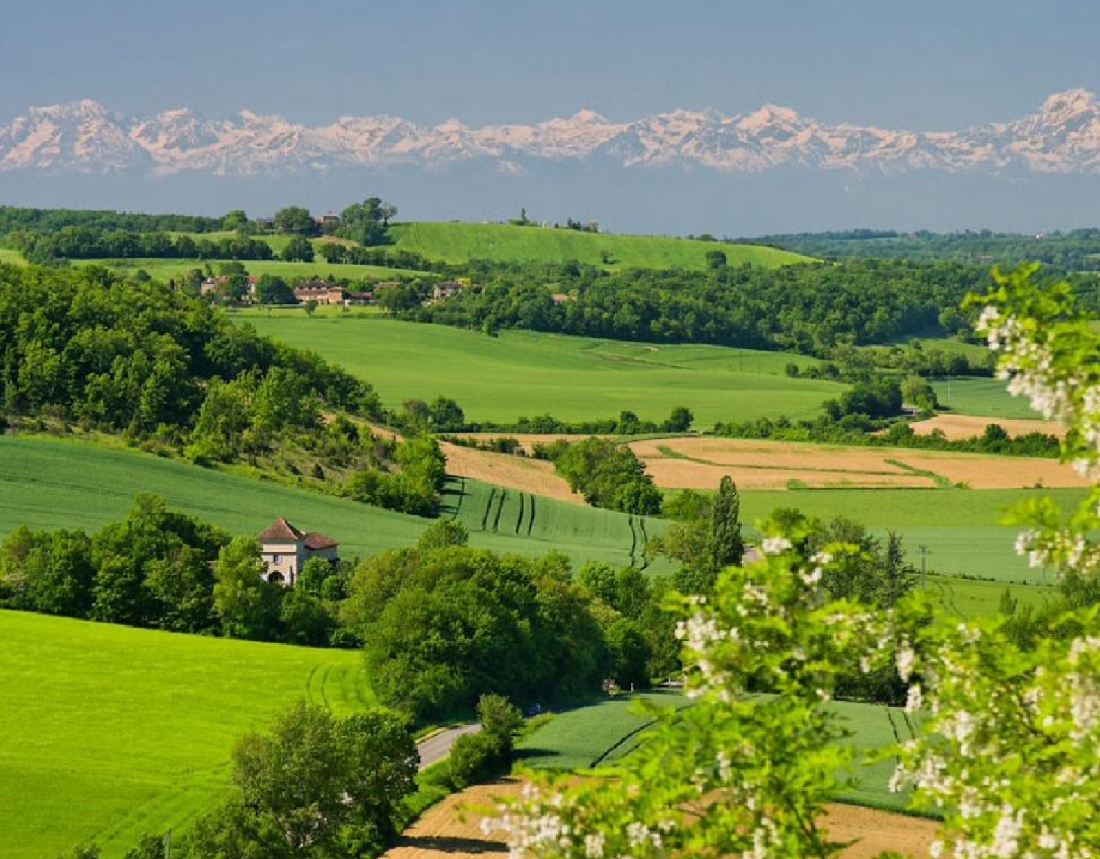 Haute-Garonne rolling hills and Pyrenees