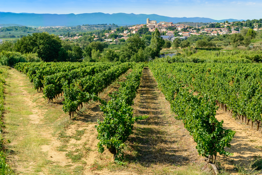 Languedoc vineyard and village views around Beziers Herault France