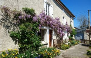 House in France For Sale